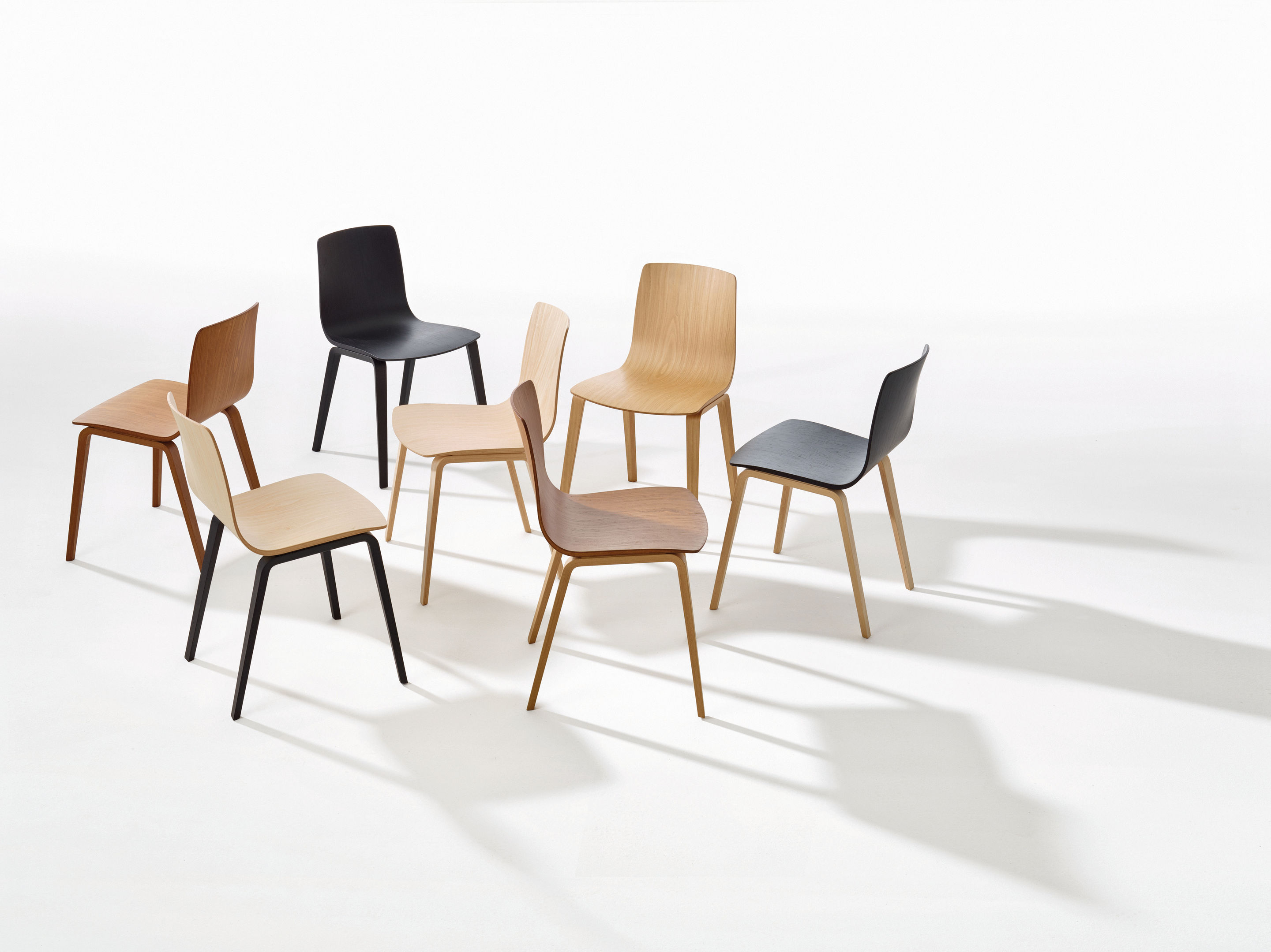 Arper Juno Stoel : Aava timber leg chair stylecraft meeting dining breakout visitor